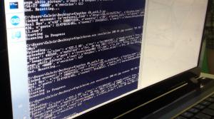 Running the Code